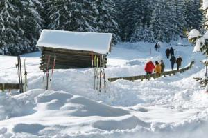 numerous winter hiking trails always cleared and through astonishing winter landscapes